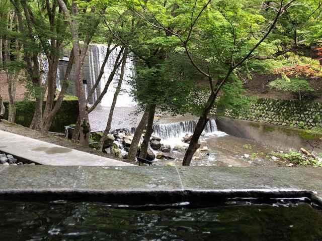 朝の渓流2.jpg