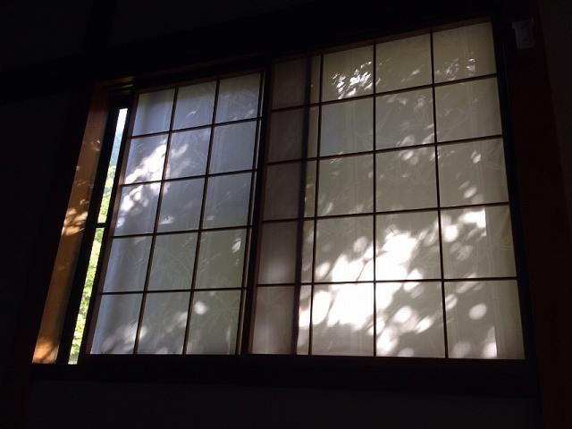朝の窓.jpg