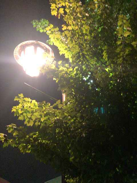 椿町入口辺り3.jpg
