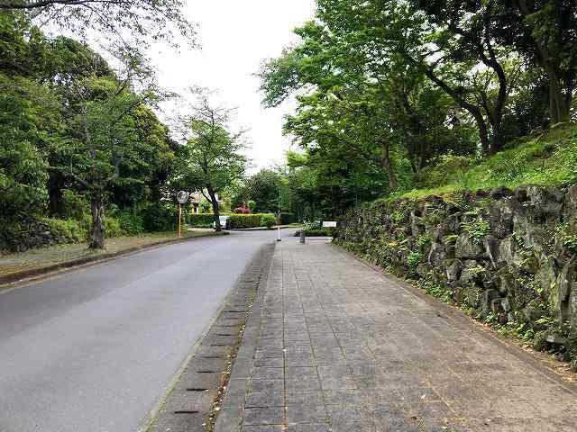 歩く7.jpg