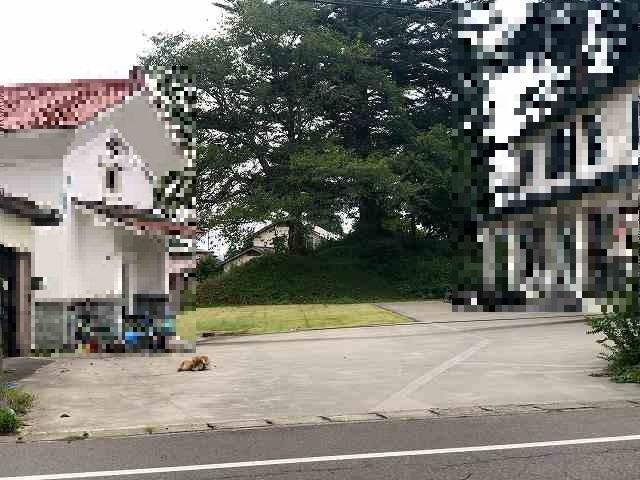 民家の敷地の向こうに1.jpg