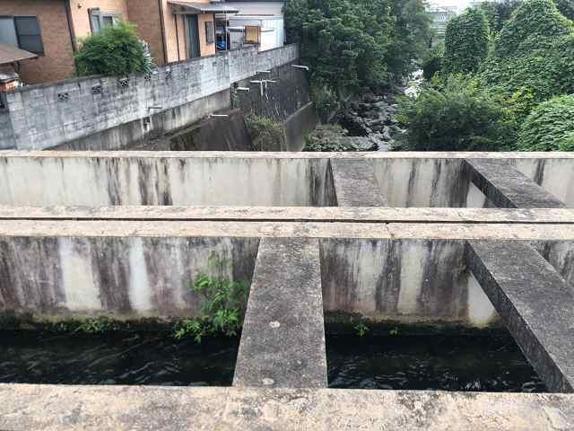 水路10川を渡る3下流を望む1.jpg