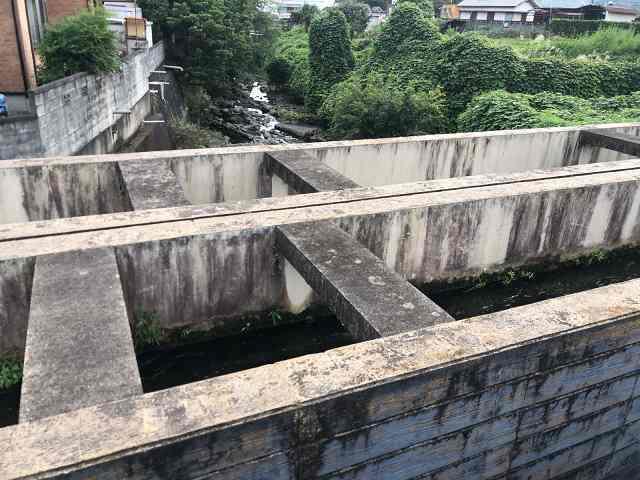 水路11川を渡る4下流を望む2.jpg