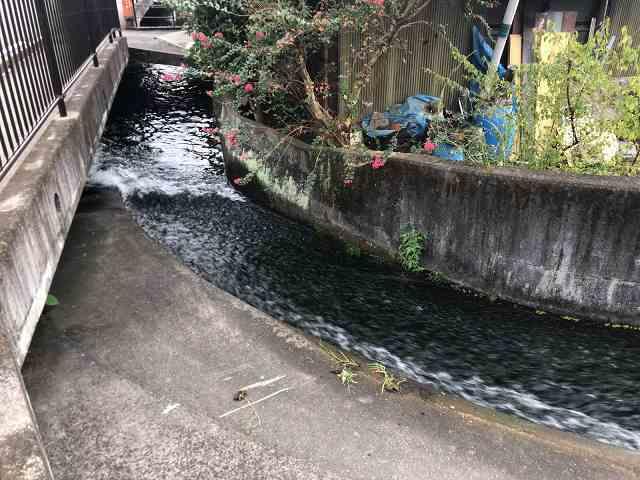 水路17急カーヴ4.jpg