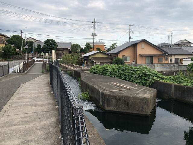 水路4二岐に分かれている.jpg