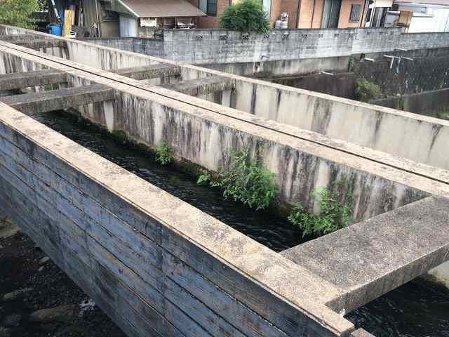 水路8川を渡る1.jpg