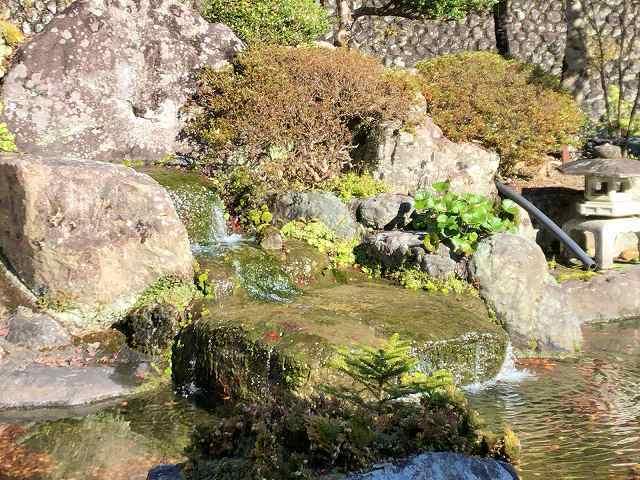 池12.jpg