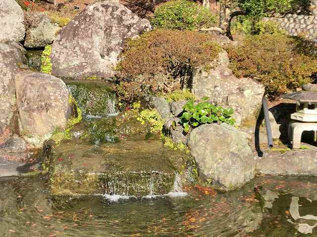 池14.jpg