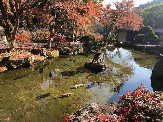 池15.jpg