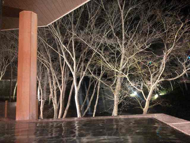渓流の湯夜2.jpg