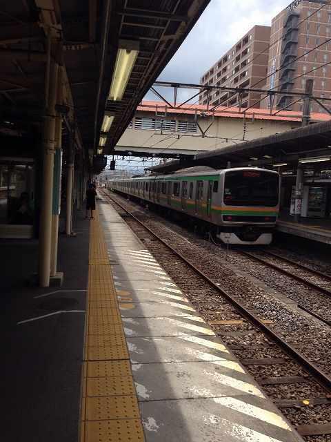 湘南新宿ラインが去って行く.jpg