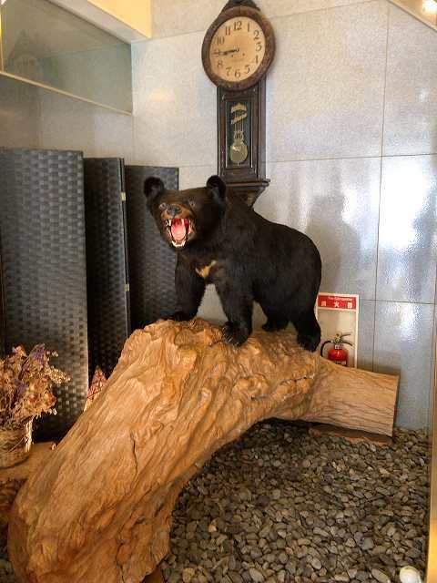 熊さん.jpg