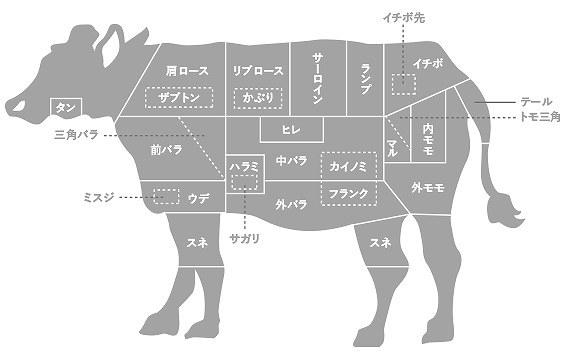 牛の部位.jpg