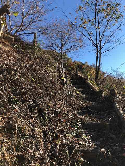 登る3.jpg