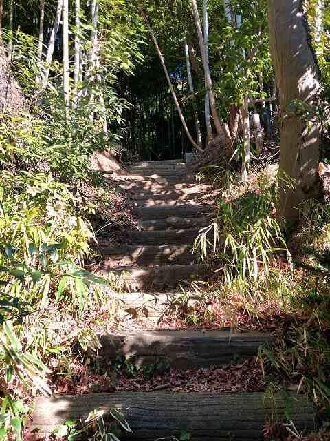 登城口9階段を登る2.jpg