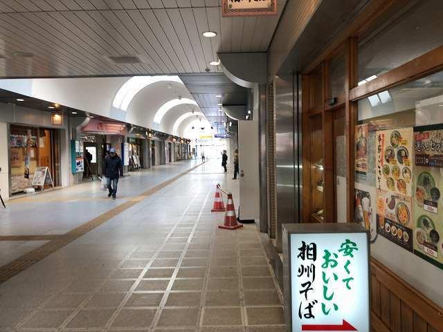 相州そば4モス4.jpg