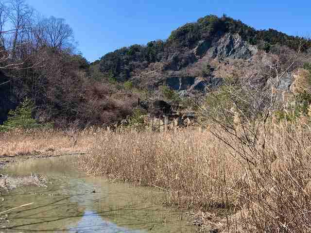 石切り場5湿地帯1.jpg