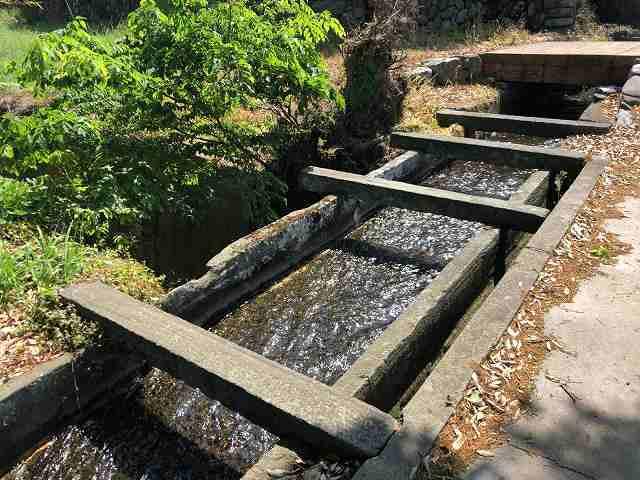 石樋5路と並んで川を渡っている3.jpg