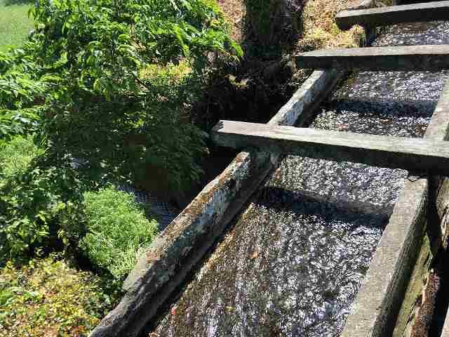 石樋6路と並んで川を渡っている4.jpg
