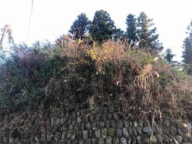 砦11見上げる4.jpg