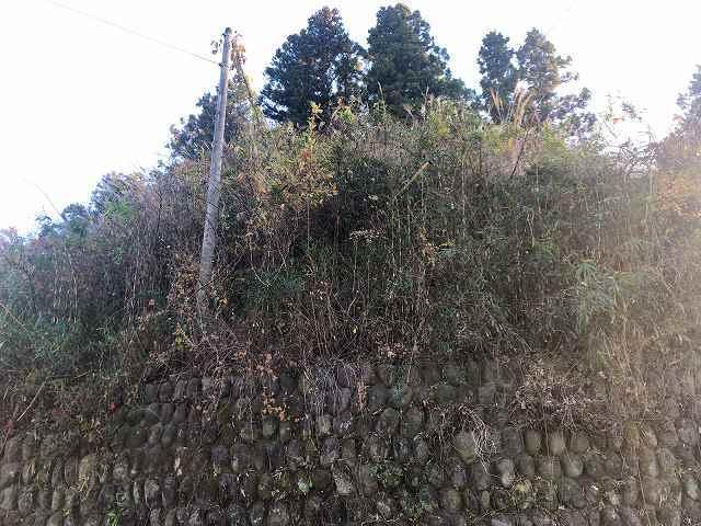 砦12見上げる5.jpg