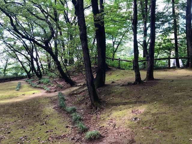 祇園城10曲輪1.jpg