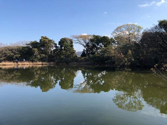 神池5向こうは海.jpg