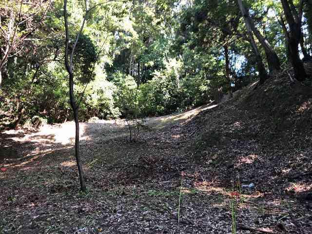 神社3自然地形か2.jpg