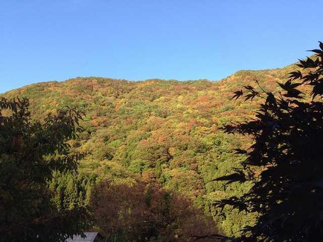 秋晴れの又見山.jpg