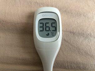翌日の体温2.jpg