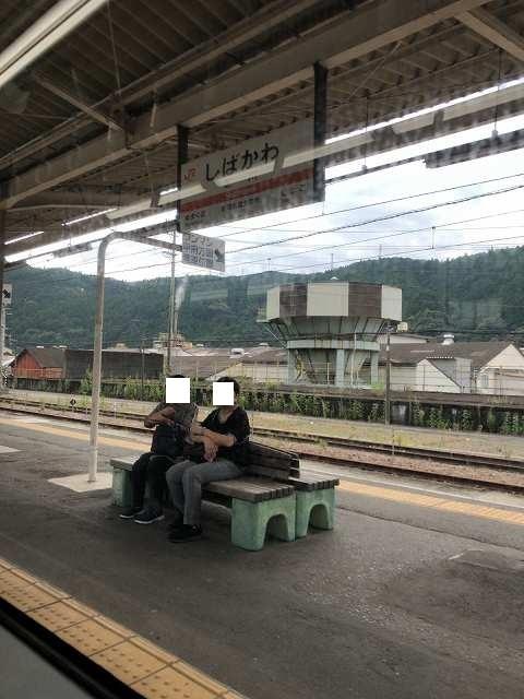 芝川駅リターンズ1.jpg