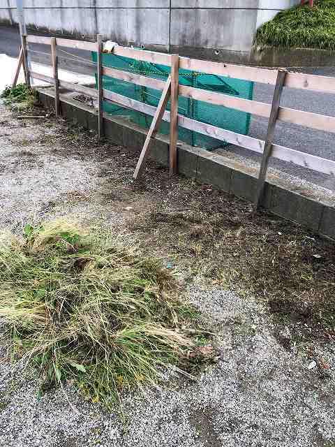 草刈り11私のエリアは簡単3.jpg