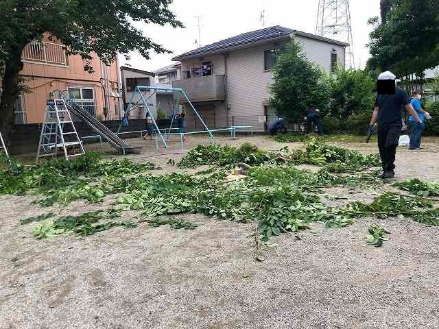 草刈り15桜の枝を切る3.jpg