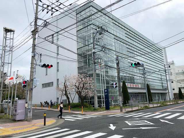 藤沢市の行政.jpg
