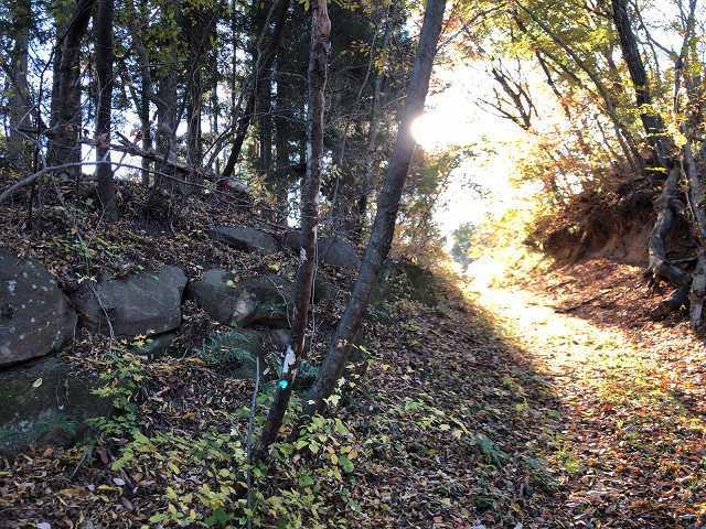 虎口の石垣2.jpg