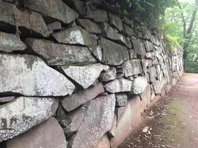 西櫓台石垣10自然の打ち込みか?2.jpg