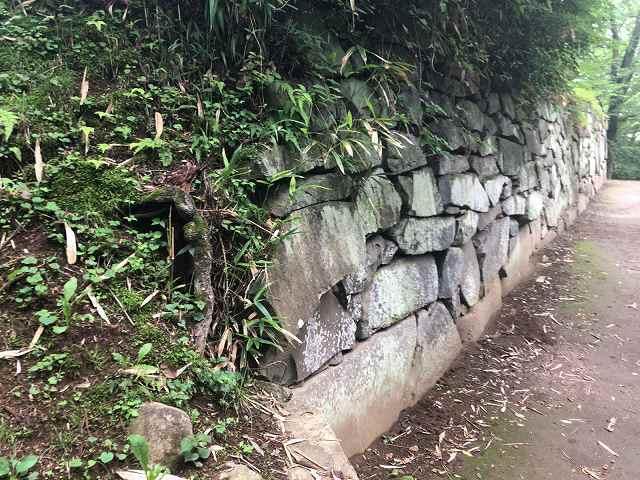 西櫓台石垣11自然の打ち込みか?3.jpg