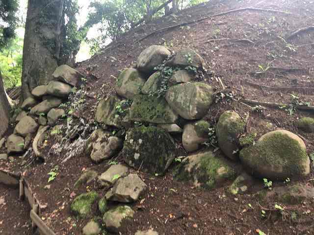 西櫓台石垣12こっちの方が自然に見える.jpg