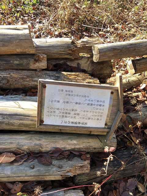 解体された丸木3但し書き1.jpg