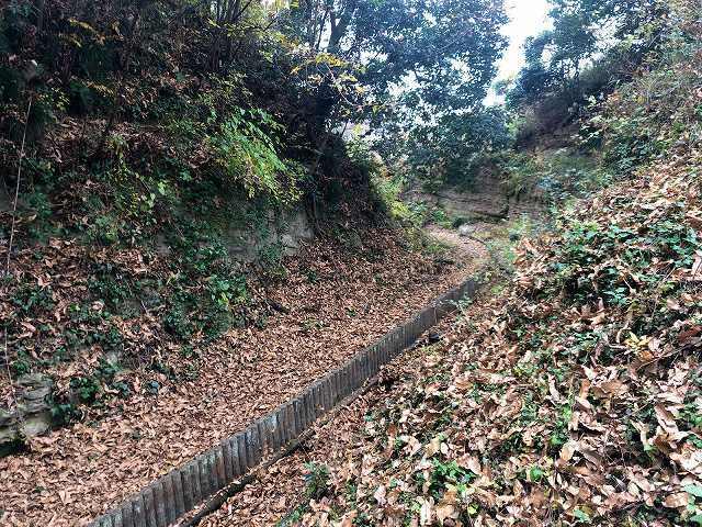 谷8天嶮の堀か2.jpg
