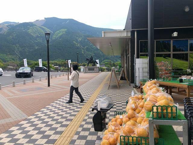 道の駅5-1.jpg