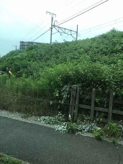 金谷停車場跡.jpg