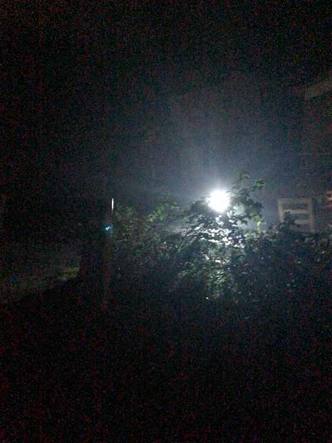 闇に光る1.jpg