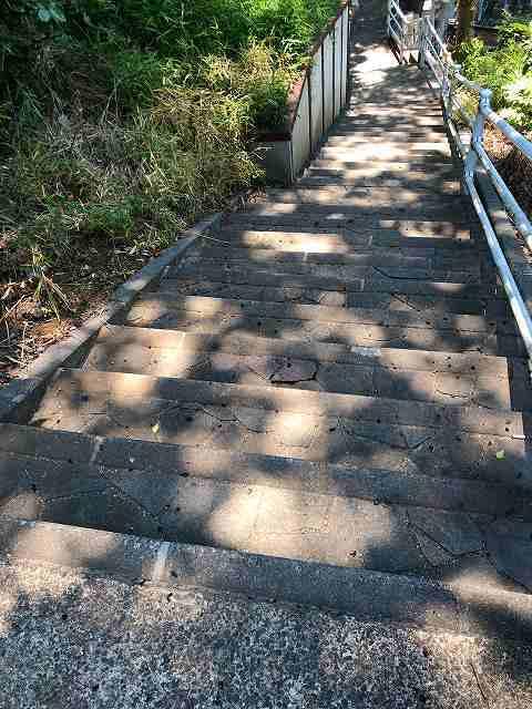 階段を下りる1.jpg