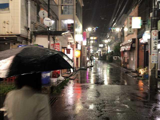 雨の夜3.jpg