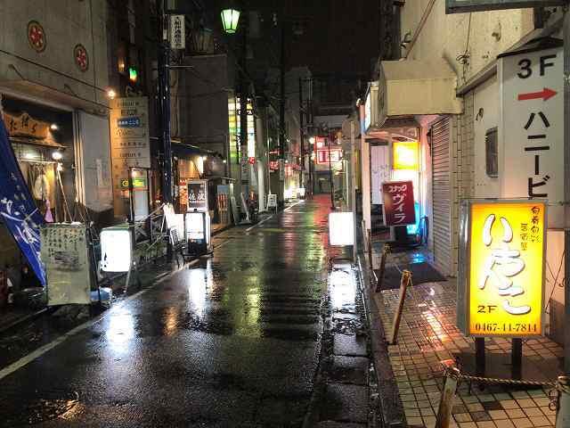 雨の夜4.jpg