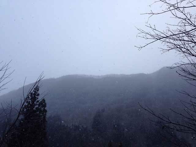 雪がパラつく1.jpg