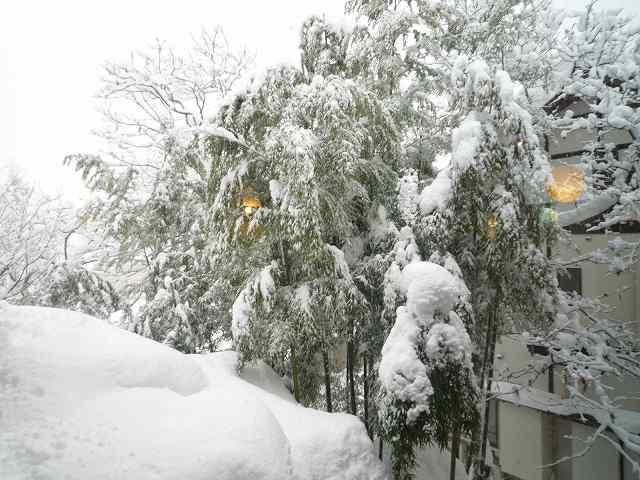 雪景色14.jpg