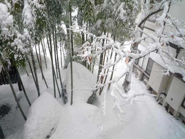 雪景色17.jpg