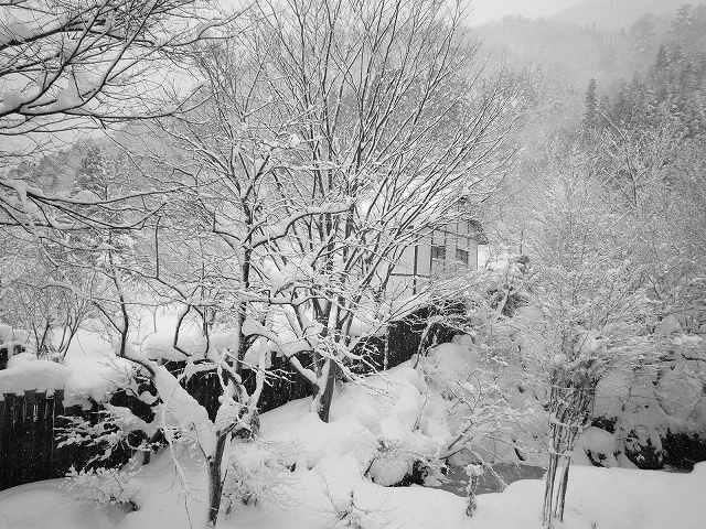 雪景色181.jpg